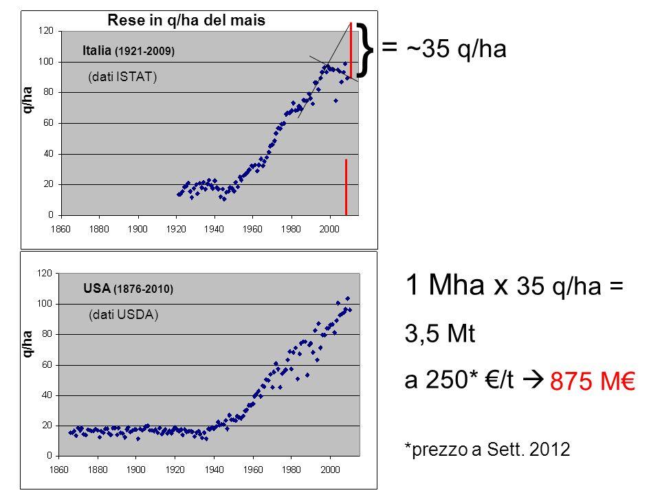 USA (1876-2010) q/ha = ~35 q/ha 1 Mha x 35 q/ha = 3,5 Mt a 250* /t *prezzo a Sett. 2012 875 M (dati USDA) Italia (1921-2009) q/ha (dati ISTAT) } Rese