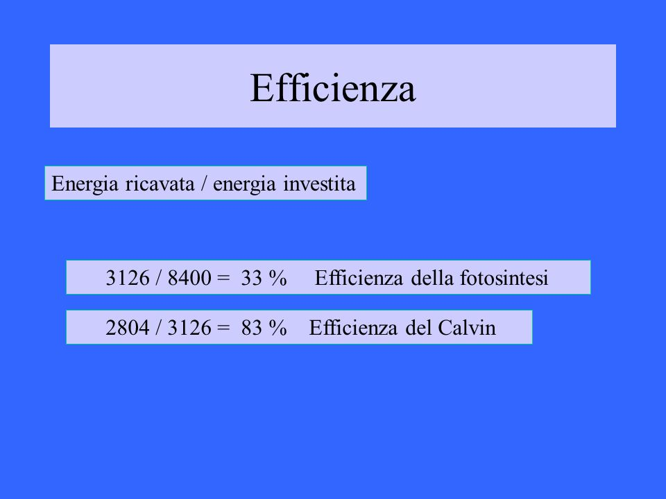 Efficienza Energia ricavata / energia investita 3126 / 8400 = 33 % Efficienza della fotosintesi 2804 / 3126 = 83 % Efficienza del Calvin