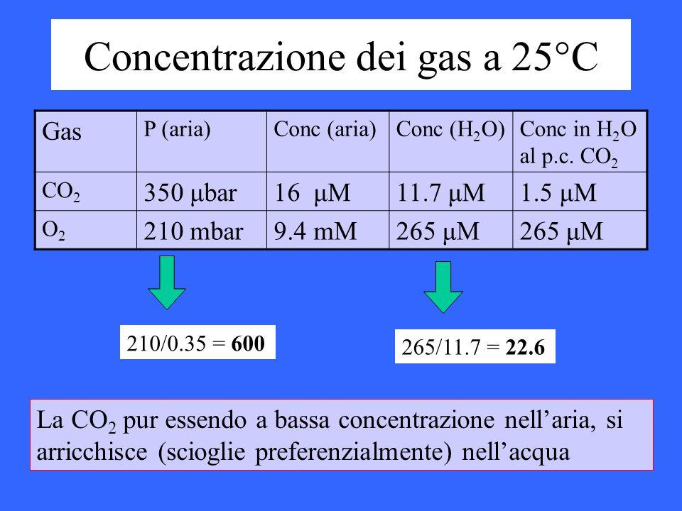 Gas P (aria)Conc (aria)Conc (H 2 O)Conc in H 2 O al p.c. CO 2 CO 2 350 μbar16 μM11.7 μM1.5 μM O2O2 210 mbar9.4 mM265 μM Concentrazione dei gas a 25°C