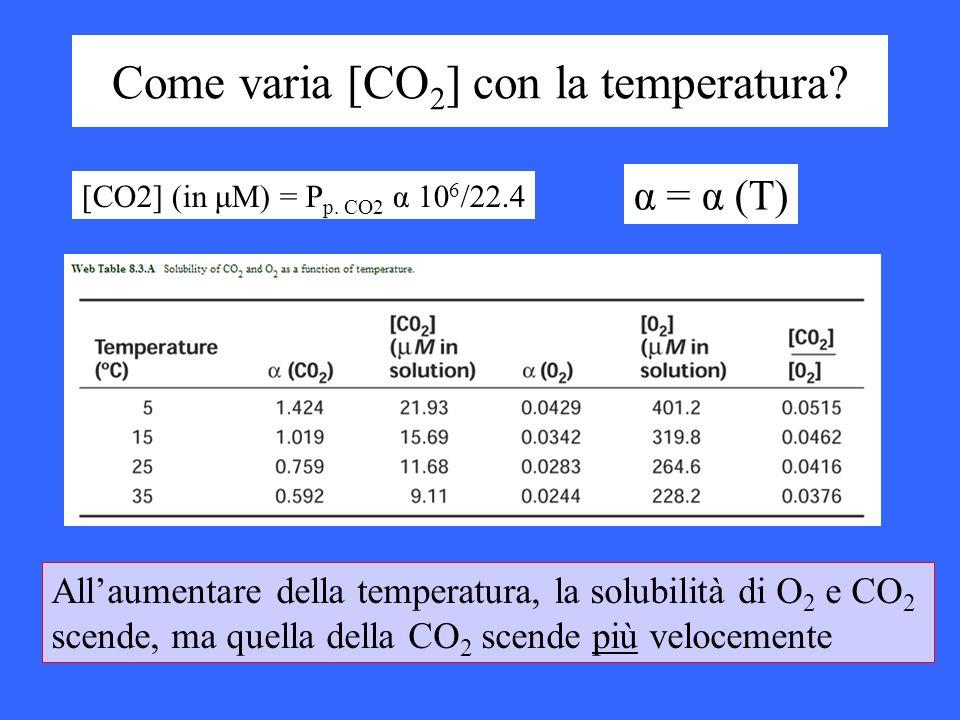 Come varia [CO 2 ] con la temperatura? [CO2] (in μM) = P p. CO2 α 10 6 /22.4 α = α (T) Allaumentare della temperatura, la solubilità di O 2 e CO 2 sce