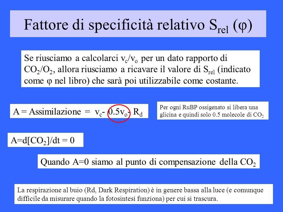 Fattore di specificità relativo S rel (φ) Se riusciamo a calcolarci v c /v o per un dato rapporto di CO 2 /O 2, allora riusciamo a ricavare il valore