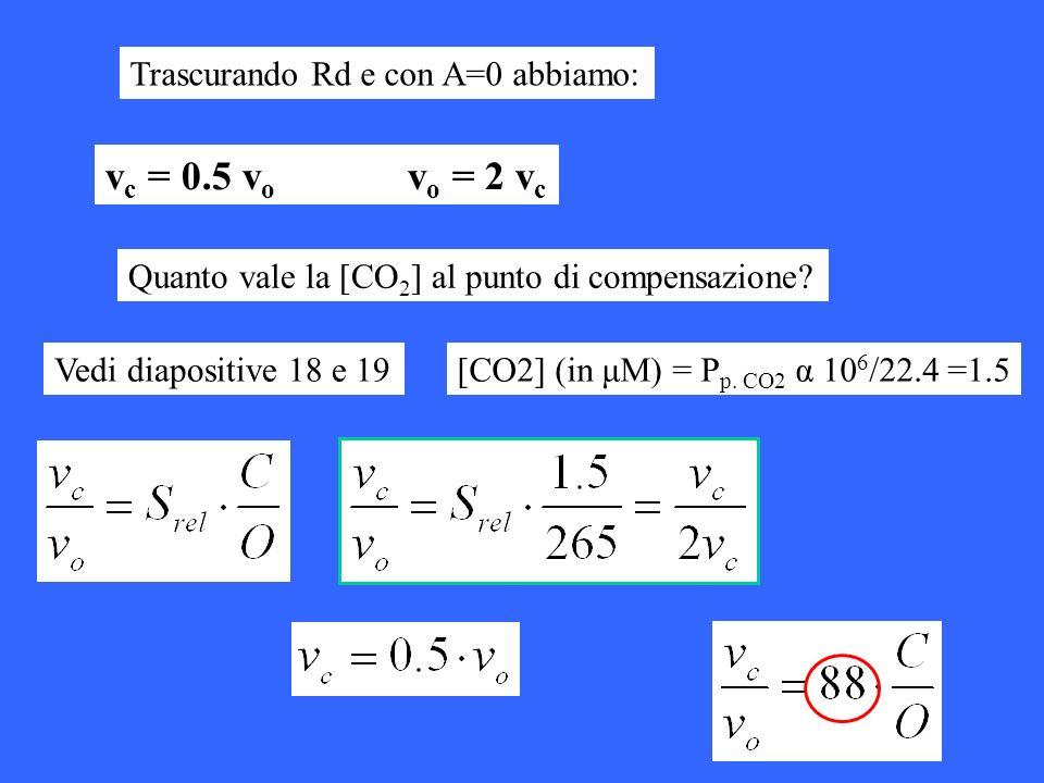 Trascurando Rd e con A=0 abbiamo: v c = 0.5 v o v o = 2 v c Quanto vale la [CO 2 ] al punto di compensazione? Vedi diapositive 18 e 19[CO2] (in μM) =