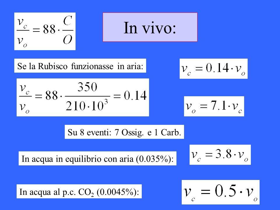 In vivo: Se la Rubisco funzionasse in aria: Su 8 eventi: 7 Ossig. e 1 Carb. In acqua in equilibrio con aria (0.035%): In acqua al p.c. CO 2 (0.0045%):