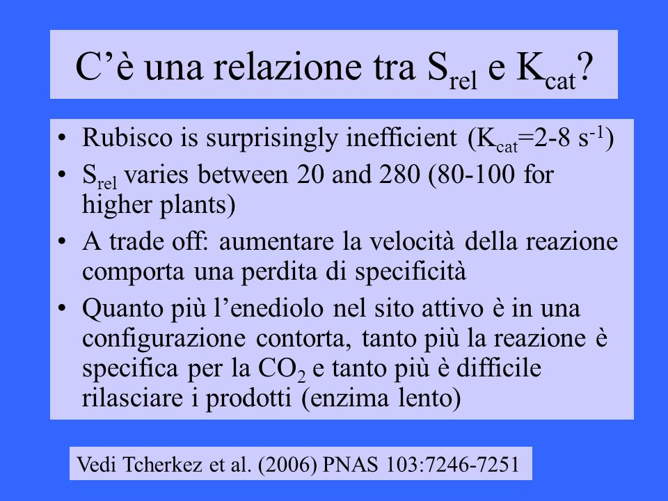 Cè una relazione tra S rel e K cat ? Rubisco is surprisingly inefficient (K cat =2-8 s -1 ) S rel varies between 20 and 280 (80-100 for higher plants)