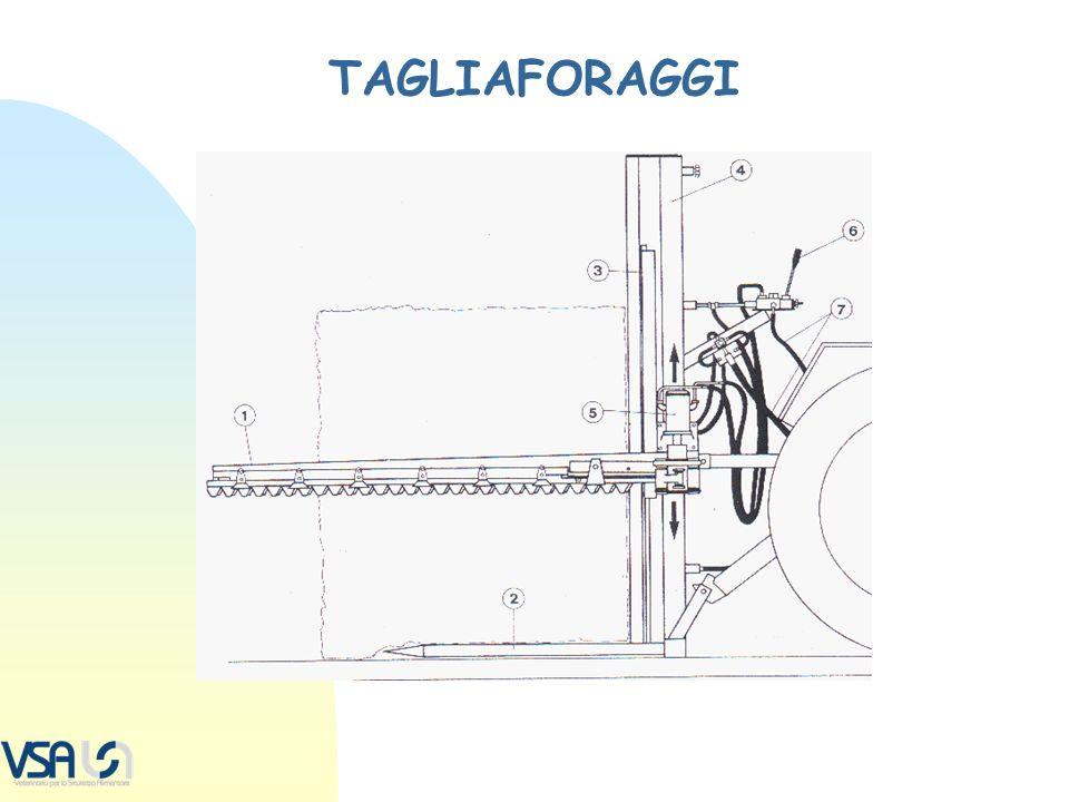 TAGLIAFORAGGI