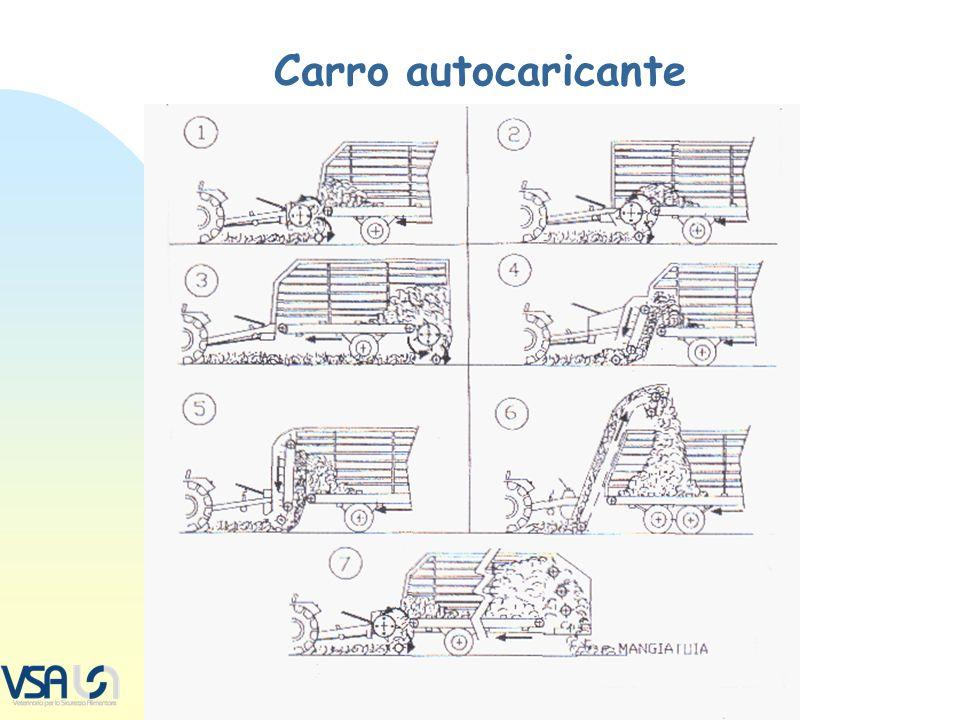 TIPI DI CARRO… Indagine su 12 costruttori, modelli commercializzati (febbraio 2008):