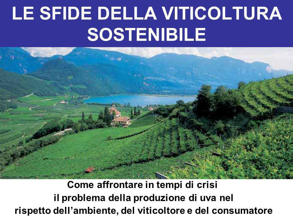 LE SFIDE DELLA VITICOLTURA SOSTENIBILE Come affrontare in tempi di crisi il problema della produzione di uva nel rispetto dellambiente, del viticoltor