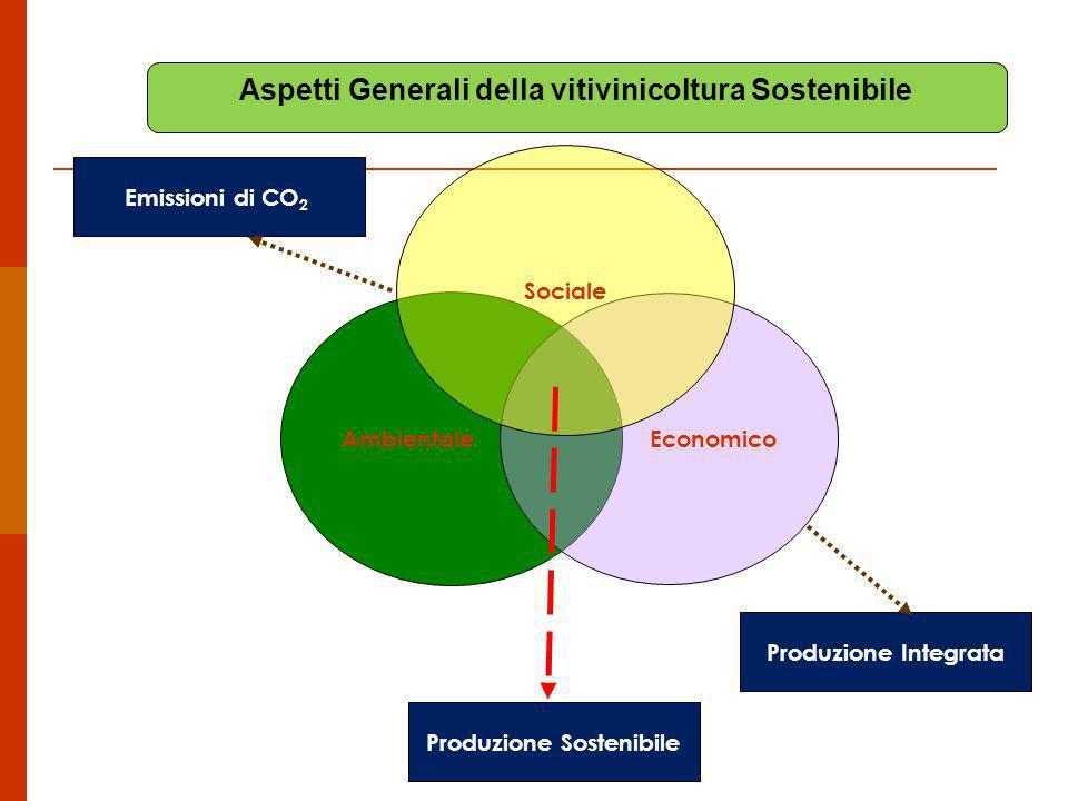 Ambientale Economico Produzione Sostenibile Sociale Produzione Integrata Aspetti Generali della vitivinicoltura Sostenibile Emissioni di CO 2