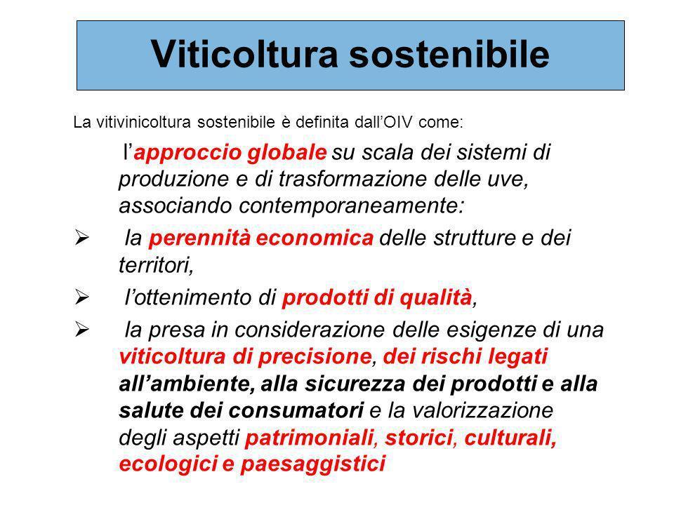 Viticoltura sostenibile La vitivinicoltura sostenibile è definita dallOIV come: lapproccio globale su scala dei sistemi di produzione e di trasformazi