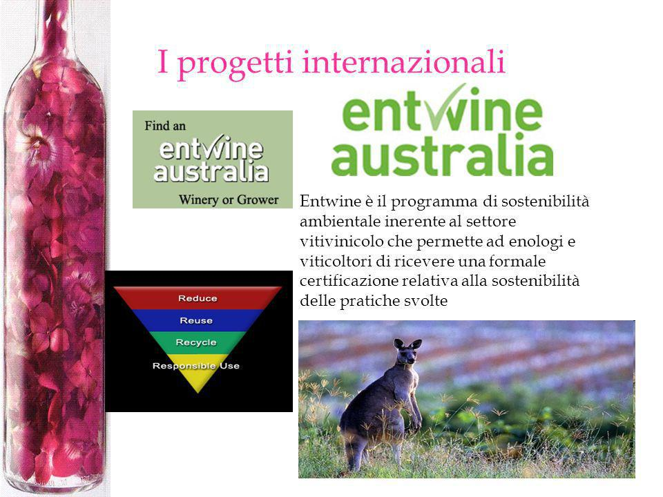 I progetti internazionali Entwine è il programma di sostenibilità ambientale inerente al settore vitivinicolo che permette ad enologi e viticoltori di
