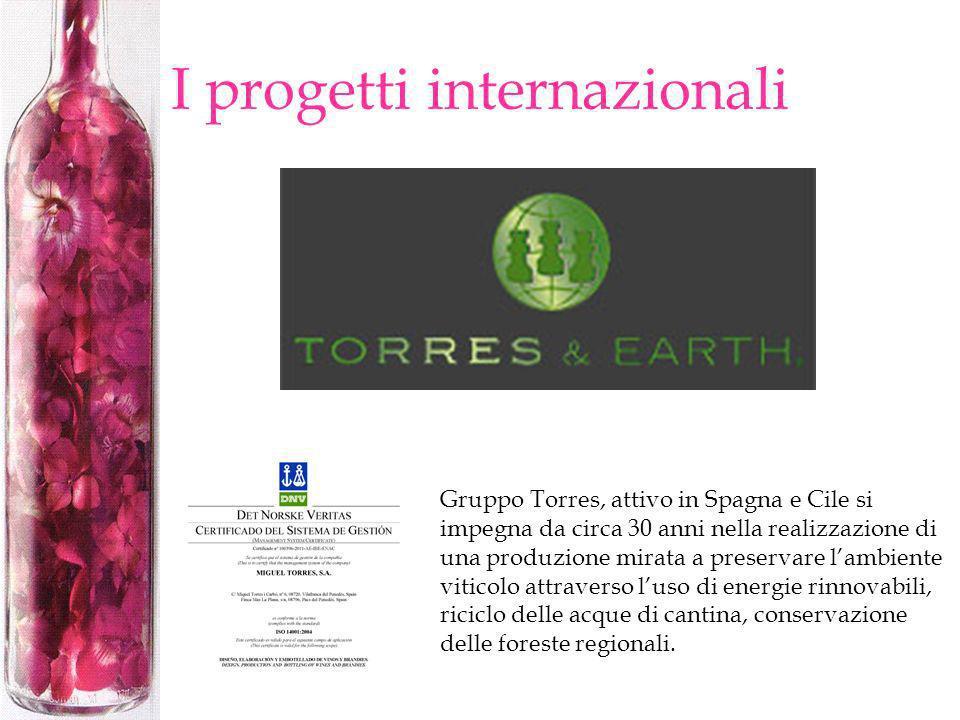 I progetti internazionali Gruppo Torres, attivo in Spagna e Cile si impegna da circa 30 anni nella realizzazione di una produzione mirata a preservare