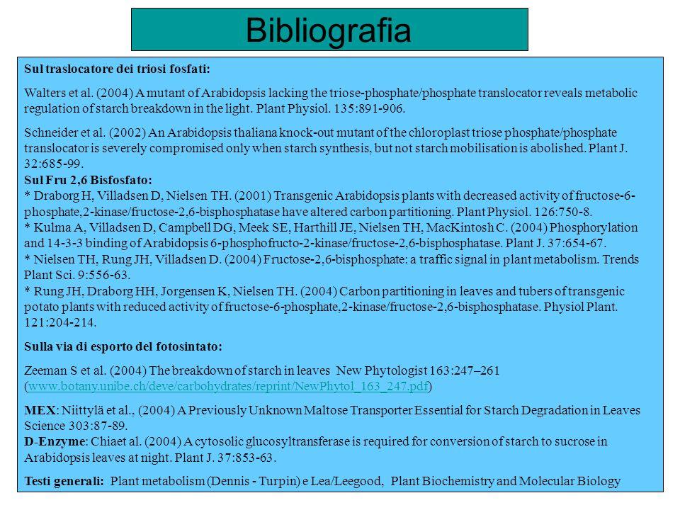 Bibliografia Sul traslocatore dei triosi fosfati: Walters et al. (2004) A mutant of Arabidopsis lacking the triose-phosphate/phosphate translocator re
