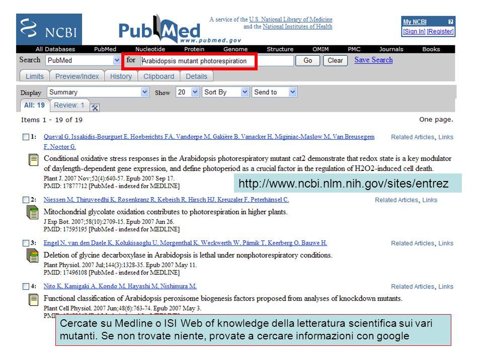 http://www.ncbi.nlm.nih.gov/sites/entrez Cercate su Medline o ISI Web of knowledge della letteratura scientifica sui vari mutanti. Se non trovate nien