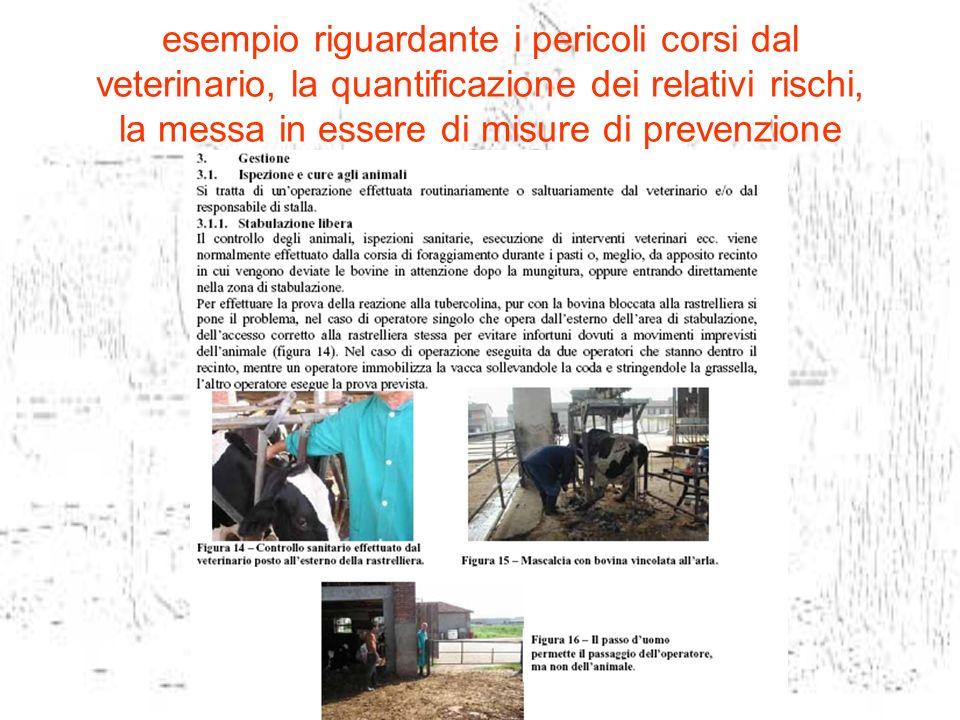 esempio riguardante i pericoli corsi dal veterinario, la quantificazione dei relativi rischi, la messa in essere di misure di prevenzione