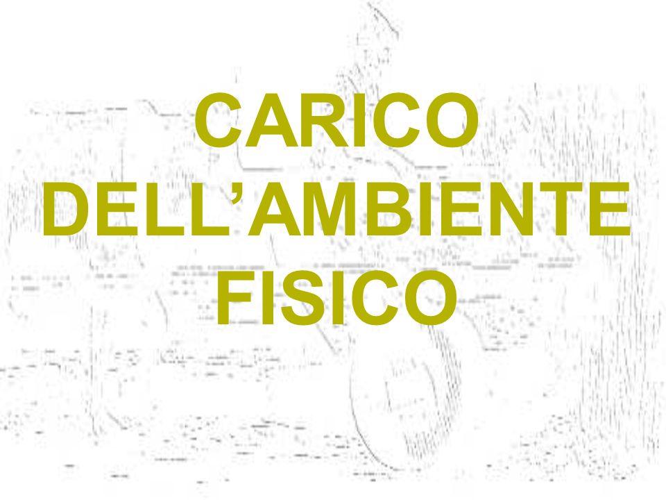 CARICO DELLAMBIENTE FISICO