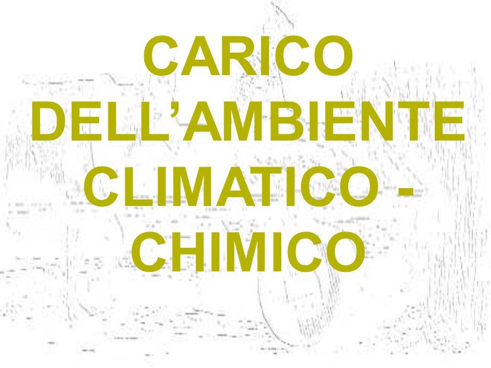 CARICO DELLAMBIENTE CLIMATICO - CHIMICO