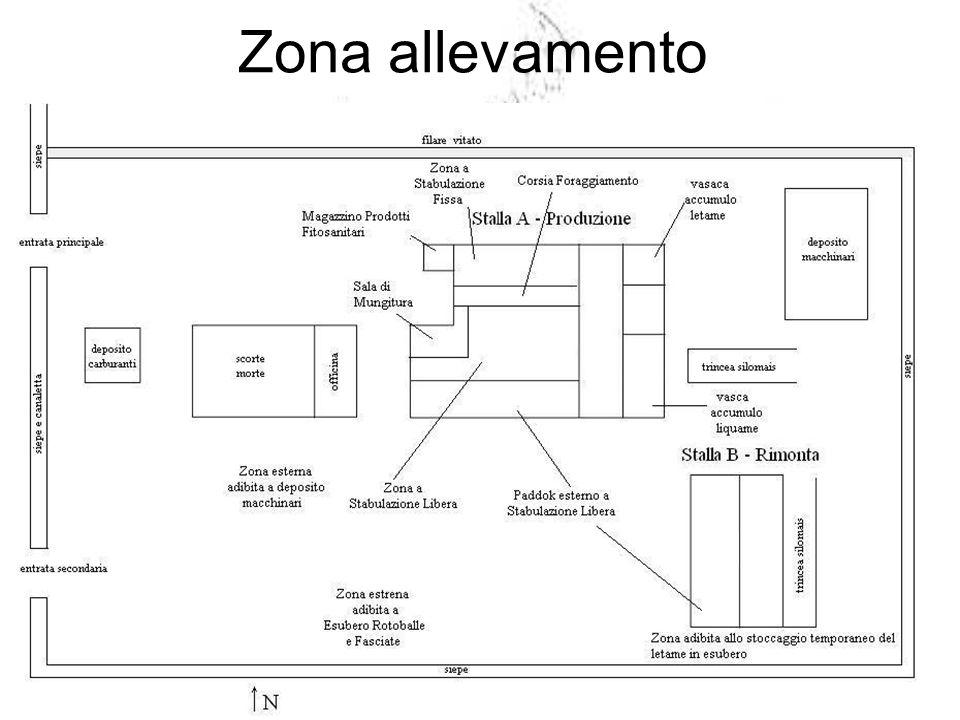 Zona allevamento