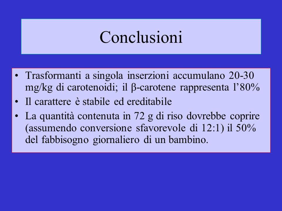 Conclusioni Trasformanti a singola inserzioni accumulano 20-30 mg/kg di carotenoidi; il β-carotene rappresenta l80% Il carattere è stabile ed ereditab