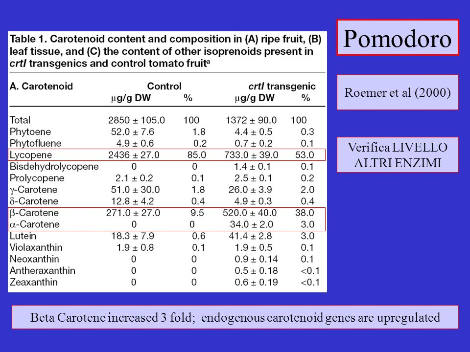 Pomodoro Verifica LIVELLO ALTRI ENZIMI Beta Carotene increased 3 fold; endogenous carotenoid genes are upregulated Roemer et al (2000)