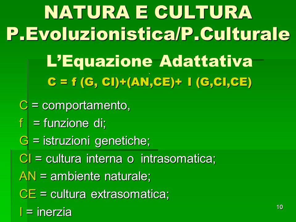 10. C = f (G, CI)+(AN,CE)+ I (G,CI,CE) LEquazione Adattativa. C = f (G, CI)+(AN,CE)+ I (G,CI,CE) C = comportamento, f = funzione di; G = istruzioni ge