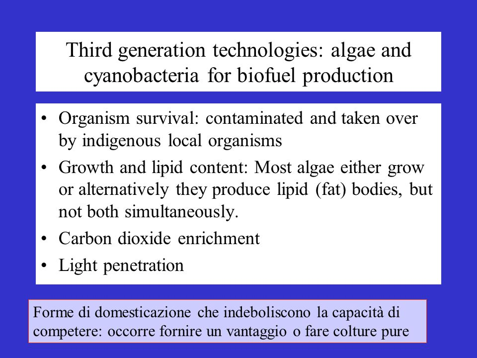 Third generation technologies: algae and cyanobacteria for biofuel production Organism survival: contaminated and taken over by indigenous local organisms Growth and lipid content: Most algae either grow or alternatively they produce lipid (fat) bodies, but not both simultaneously.