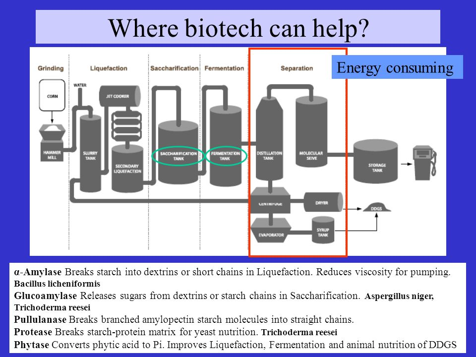 Energy consuming Where biotech can help.