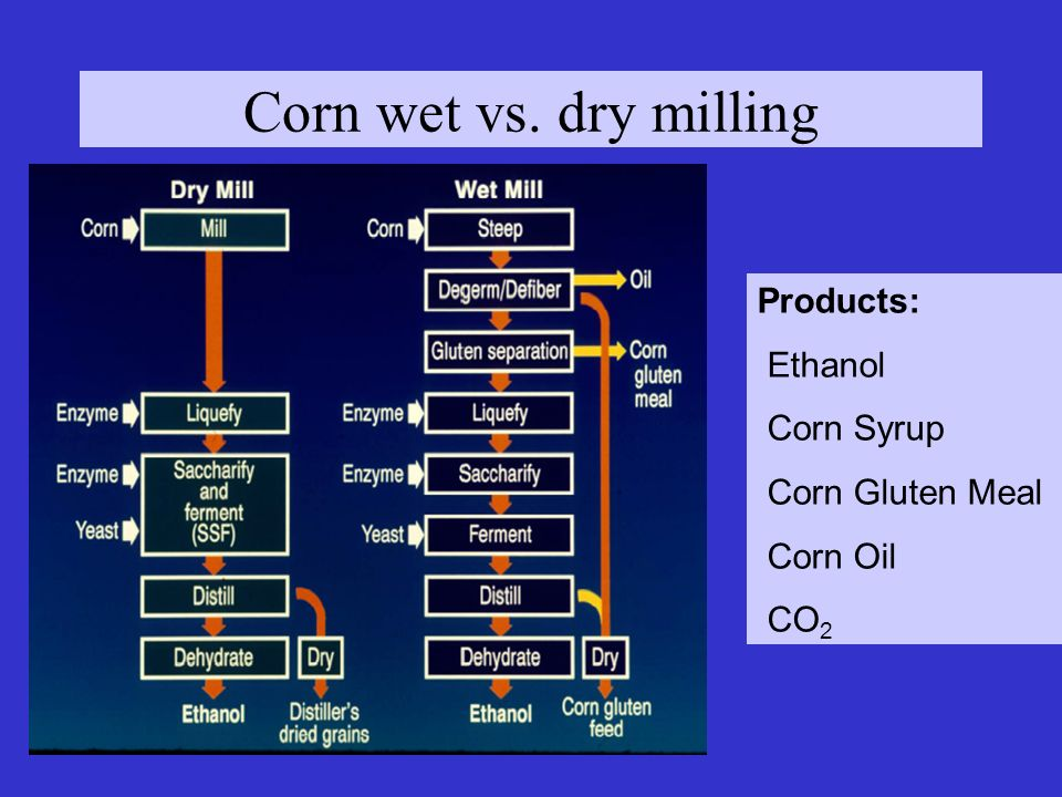 Corn wet vs. dry milling Products: Ethanol Corn Syrup Corn Gluten Meal Corn Oil CO 2