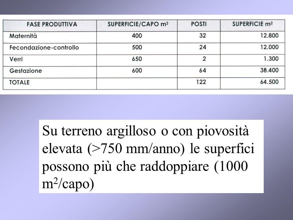 Su terreno argilloso o con piovosità elevata (>750 mm/anno) le superfici possono più che raddoppiare (1000 m 2 /capo)