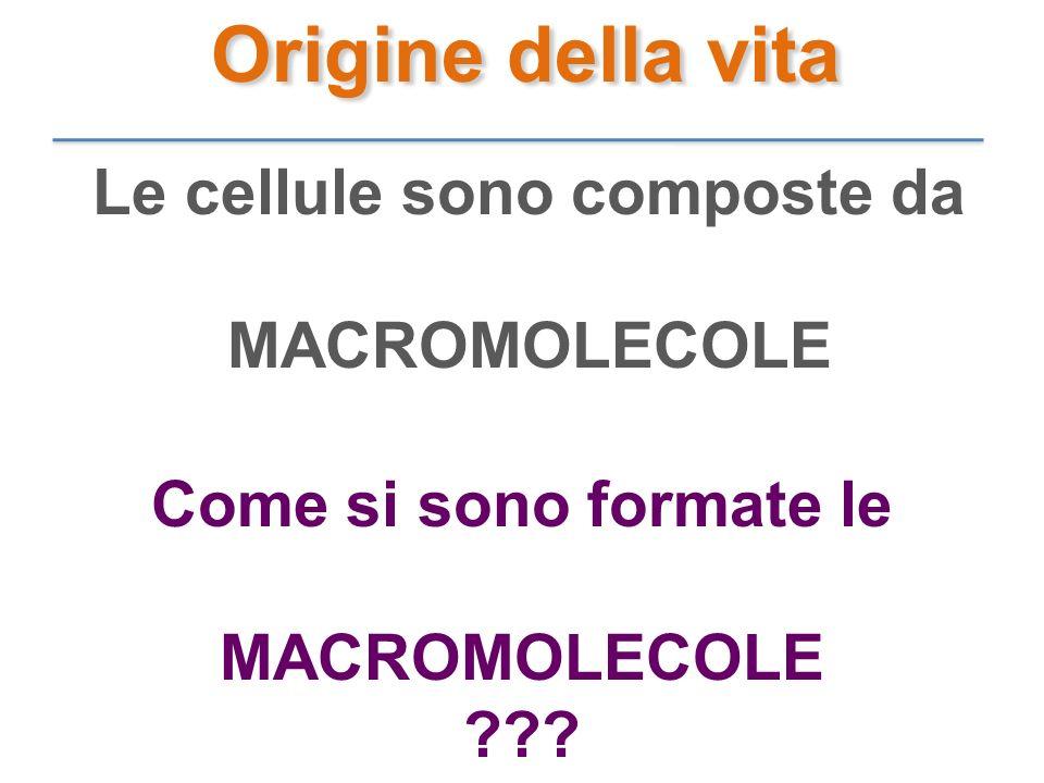 Le cellule sono composte da MACROMOLECOLE Come si sono formate le MACROMOLECOLE ??? Origine della vita