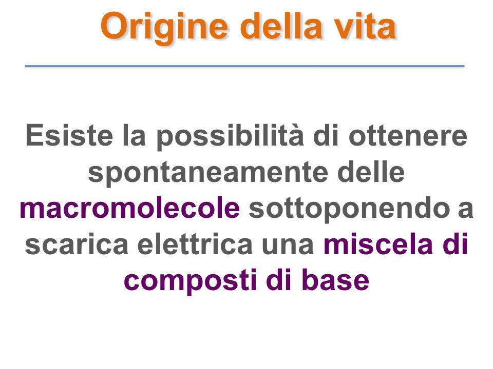 Esiste la possibilità di ottenere spontaneamente delle macromolecole sottoponendo a scarica elettrica una miscela di composti di base Origine della vi