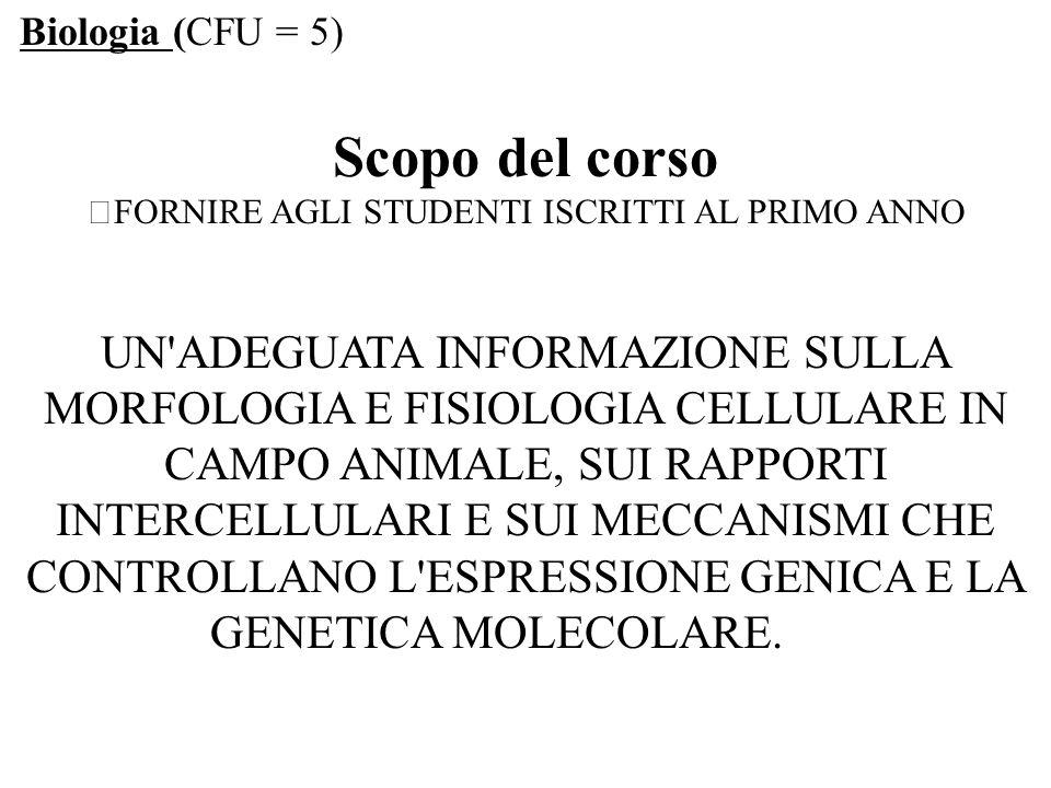 La cellula eucariotica COMPARTIMENTI CELLULARI.NUCLEO - nucleolo (non delimitato da membrana).