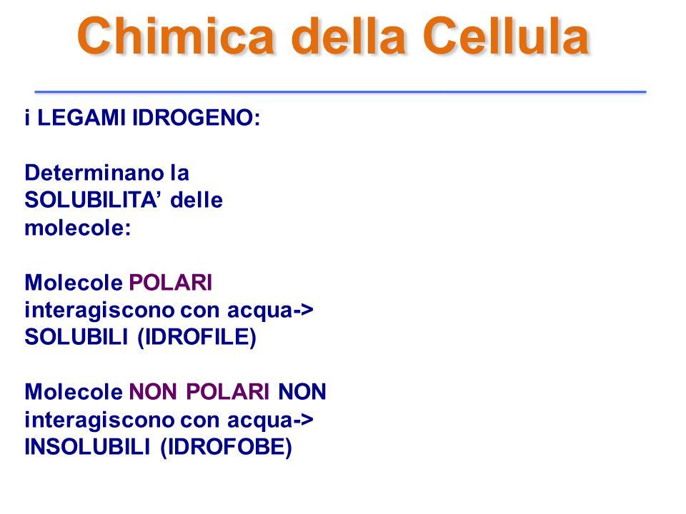 Chimica della Cellula i LEGAMI IDROGENO: Determinano la SOLUBILITA delle molecole: Molecole POLARI interagiscono con acqua-> SOLUBILI (IDROFILE) Molec