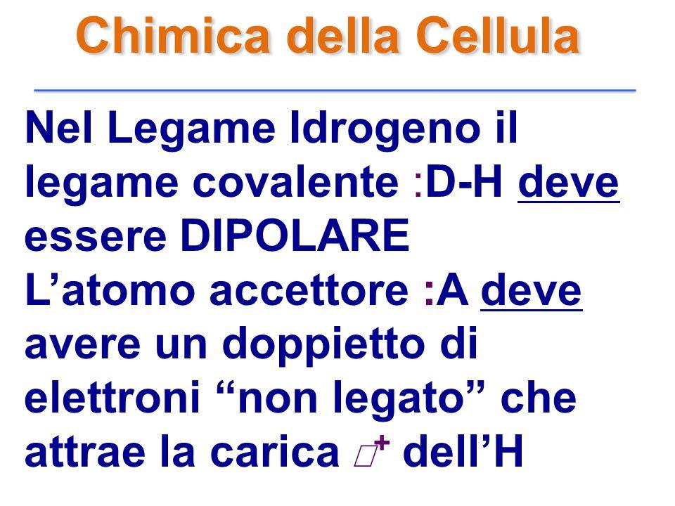 Chimica della Cellula Nel Legame Idrogeno il legame covalente :D-H deve essere DIPOLARE Latomo accettore :A deve avere un doppietto di elettroni non l