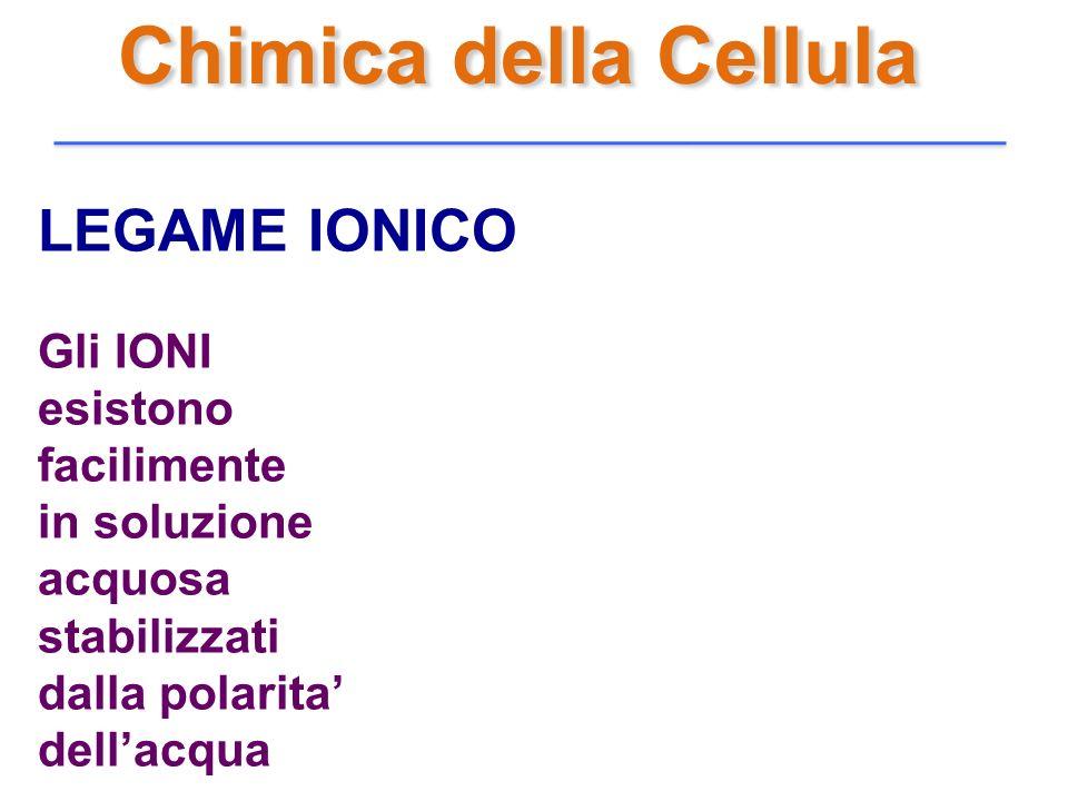 Chimica della Cellula LEGAME IONICO Gli IONI esistono facilimente in soluzione acquosa stabilizzati dalla polarita dellacqua