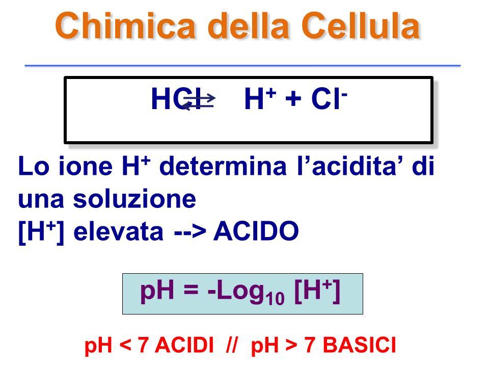 Chimica della Cellula Lo ione H + determina lacidita di una soluzione [H + ] elevata --> ACIDO pH = -Log 10 [H + ] pH 7 BASICI HCl H + + Cl -