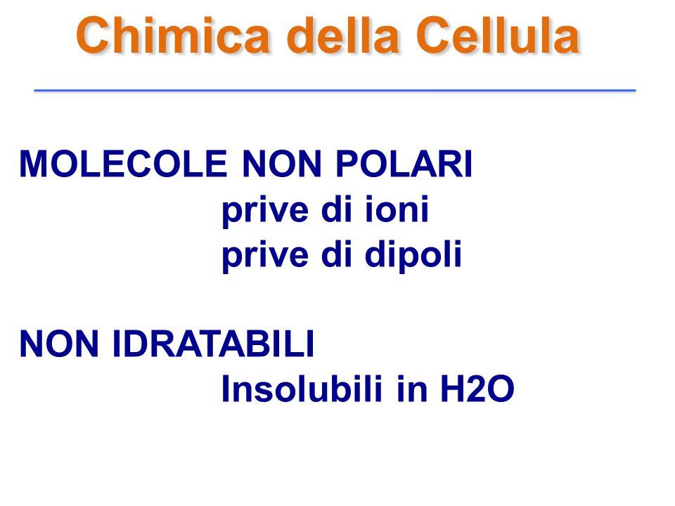 Chimica della Cellula MOLECOLE NON POLARI prive di ioni prive di dipoli NON IDRATABILI Insolubili in H2O