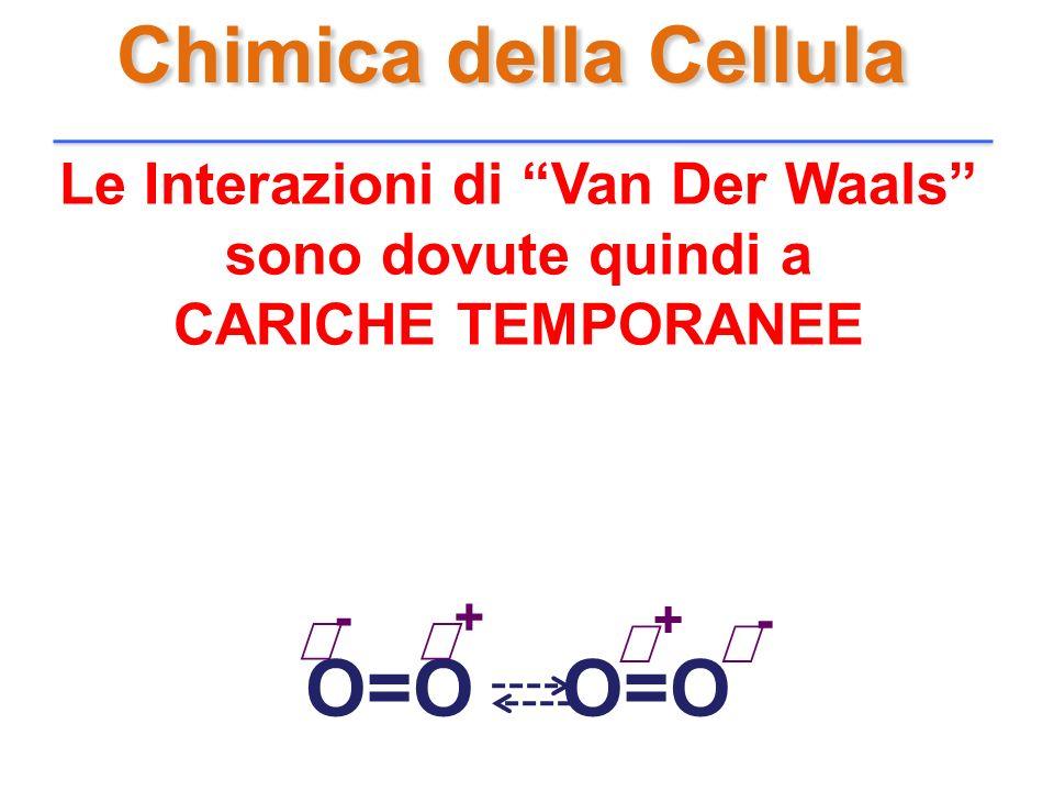 Chimica della Cellula Le Interazioni di Van Der Waals sono dovute quindi a CARICHE TEMPORANEE O=O - + - +