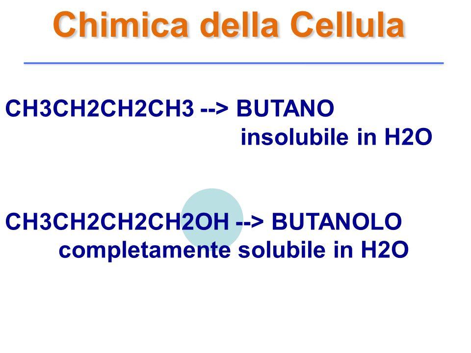 Chimica della Cellula CH3CH2CH2CH3 --> BUTANO insolubile in H2O CH3CH2CH2CH2OH --> BUTANOLO completamente solubile in H2O