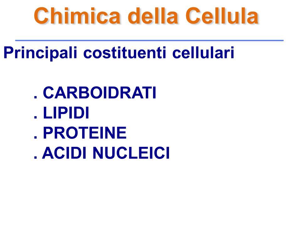 Chimica della Cellula Principali costituenti cellulari. CARBOIDRATI. LIPIDI. PROTEINE. ACIDI NUCLEICI