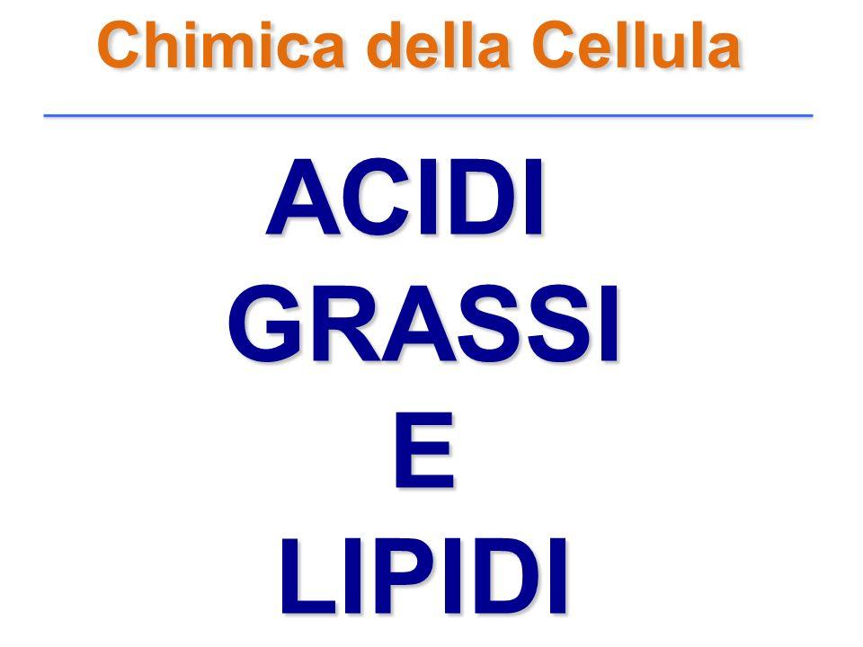 Chimica della Cellula ACIDIGRASSIELIPIDI