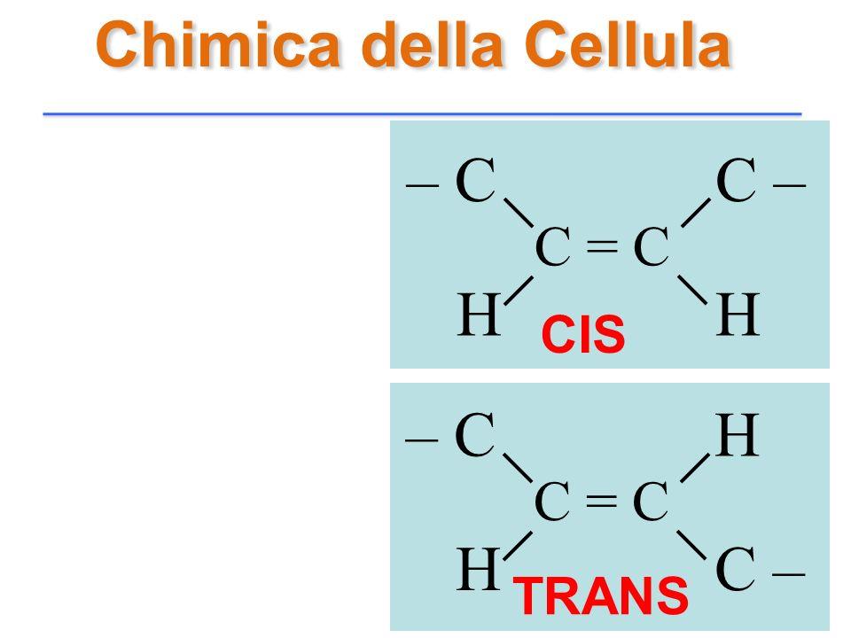 Chimica della Cellula C = C C –– C HH C = C H– C C –H CIS TRANS