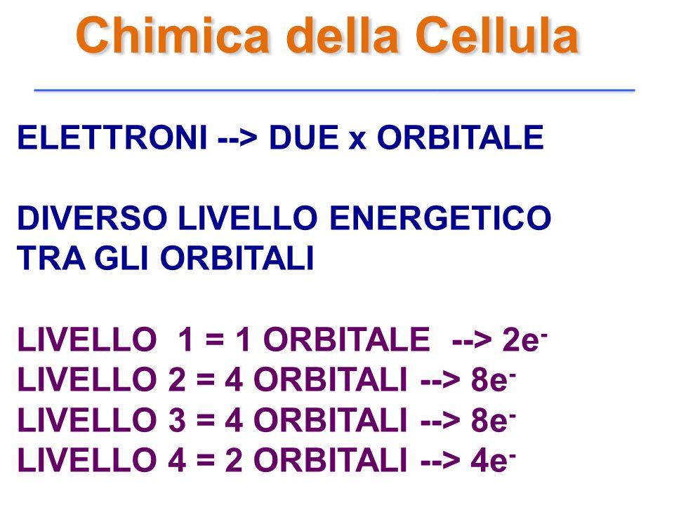 Chimica della Cellula ELETTRONI --> DUE x ORBITALE DIVERSO LIVELLO ENERGETICO TRA GLI ORBITALI LIVELLO 1 = 1 ORBITALE --> 2e - LIVELLO 2 = 4 ORBITALI
