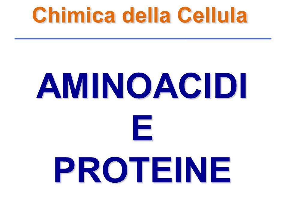 Chimica della Cellula AMINOACIDIEPROTEINE