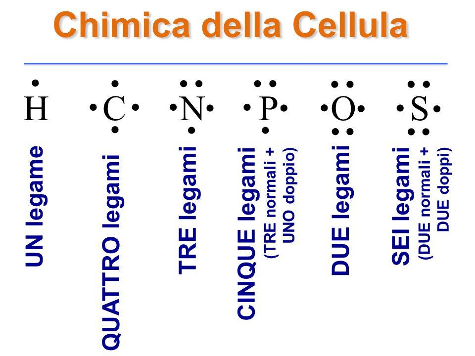 Chimica della Cellula H C N P O S........................... U N l e g a m e Q U A T T R O l e g a m i T R E l e g a m i C I N Q U E l e g a m i ( T R