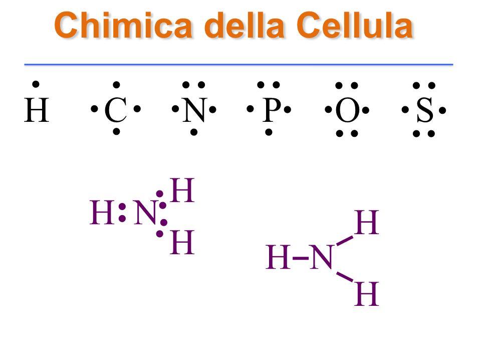 Chimica della Cellula H C N P O S............................. H N H H.... H H