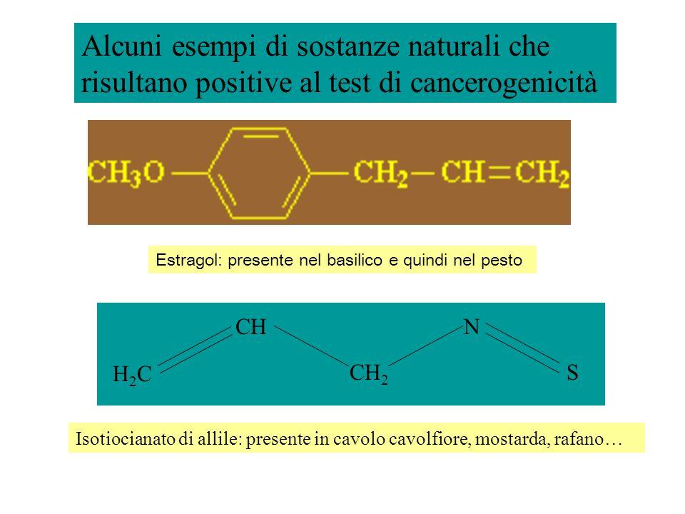 Alcuni esempi di sostanze naturali che risultano positive al test di cancerogenicità Isotiocianato di allile: presente in cavolo cavolfiore, mostarda,