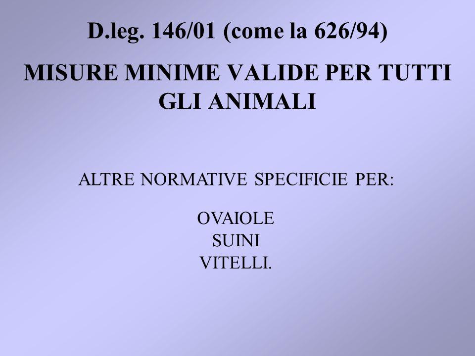 MISURE MINIME VALIDE PER TUTTI GLI ANIMALI ALTRE NORMATIVE SPECIFICIE PER: D.leg. 146/01 (come la 626/94) OVAIOLE SUINI VITELLI.