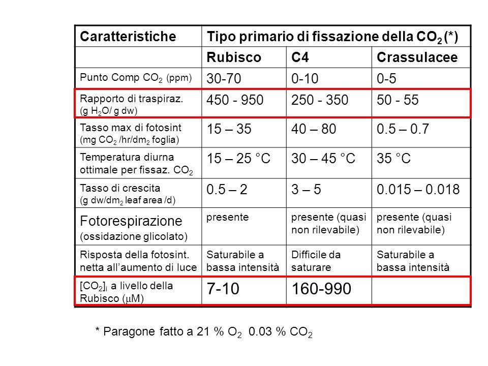 CaratteristicheTipo primario di fissazione della CO 2 (*) RubiscoC4Crassulacee Punto Comp CO 2 (ppm) 30-700-100-5 Rapporto di traspiraz. (g H 2 O/ g d
