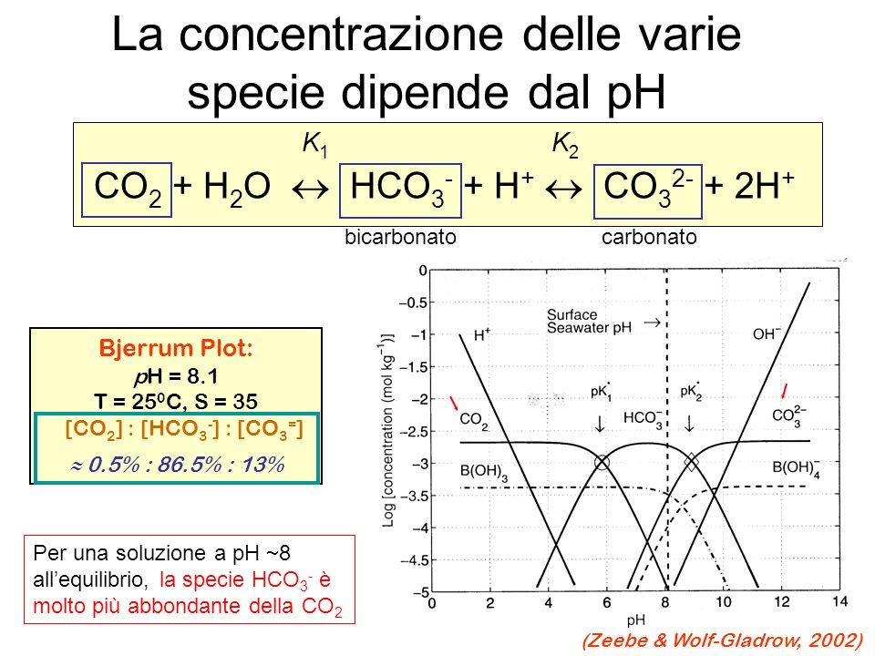 La concentrazione delle varie specie dipende dal pH K 1 K 2 CO 2 + H 2 O HCO 3 - + H + CO 3 2- + 2H + Bjerrum Plot: pH = 8.1 T = 25 0 C, S = 35 [CO 2