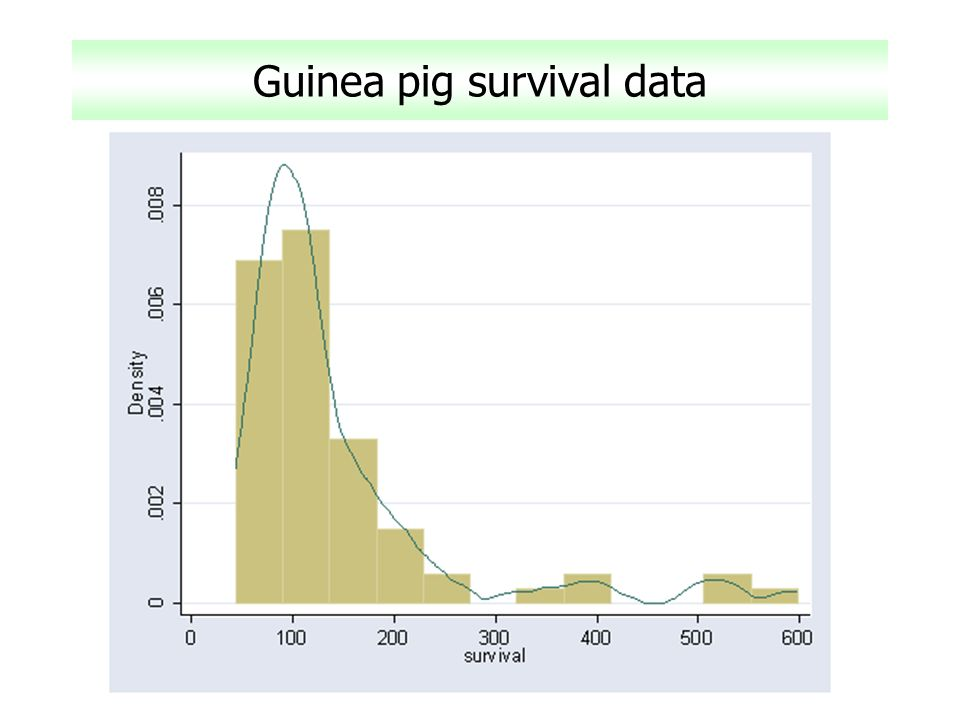 Guinea pig survival data